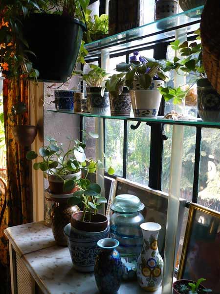 atla-061608-indoor01